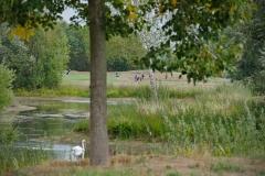 _CISM_Golf_Casi_28.08._19